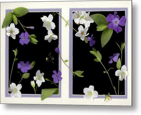 Metal Print featuring the photograph Double Delight by Sandi F Hutchins