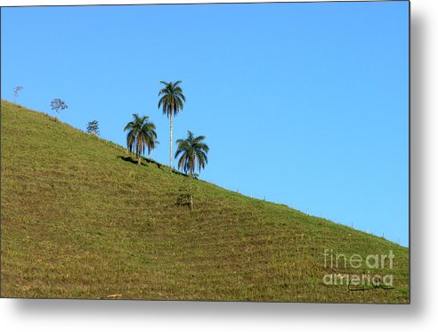Downhill Metal Print featuring the photograph Downhill by Carlos Alvim