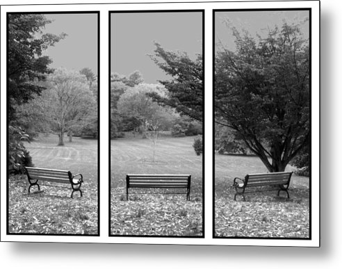 Nature Metal Print featuring the digital art Bench View Triptic by Tom Romeo