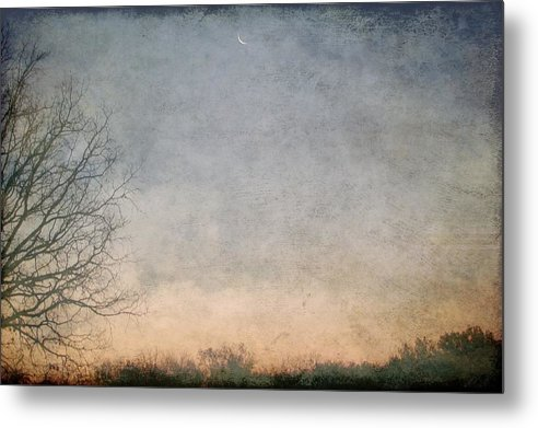 Metal Print featuring the photograph Misty Morning Moon by Luciana Seymour
