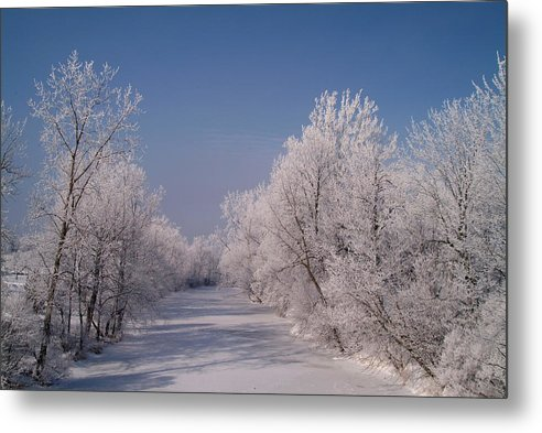 Snow Metal Print featuring the photograph 020810-60 by Mike Davis
