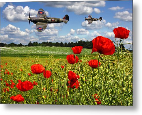 Raf Metal Print featuring the photograph Spitfires And Poppy Field by Ken Brannen