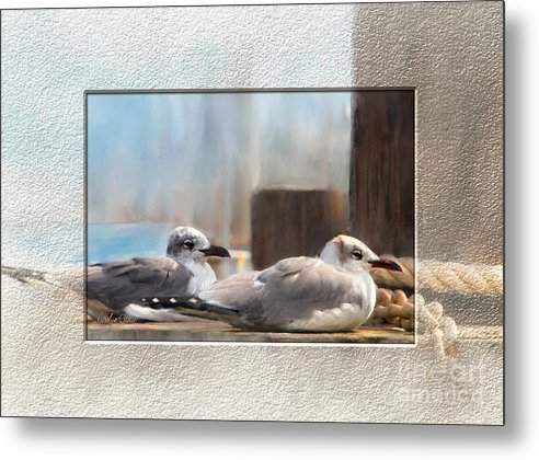 Seascape Birds Sea Birds Digital Media Metal Print featuring the painting A Place In The Sun by Carolyn Staut