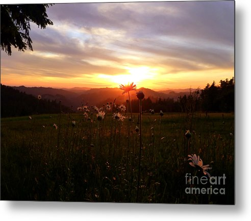 Nature Metal Print featuring the photograph Shouting With Joy by JoAnn SkyWatcher