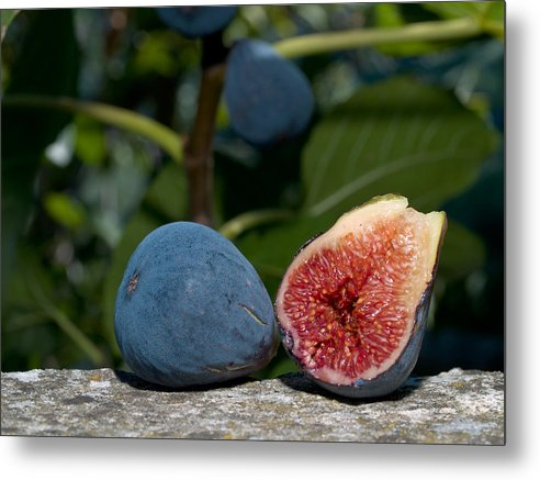 Fruit Metal Print featuring the photograph Ripe Figs by Jim DeLillo