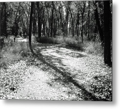 Landscape Metal Print featuring the photograph Shadow Path by Allan McConnell