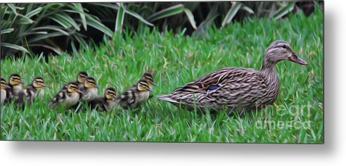 Make Way For The Ducklings Metal Print featuring the photograph Following Mommy II by Lee Dos Santos