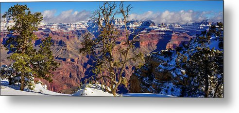 Arizona Metal Print featuring the photograph Winter Touch by Radek Hofman