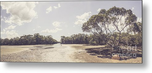 Estuary Metal Print featuring the photograph Antique Mangrove Landscape by Jorgo Photography - Wall Art Gallery