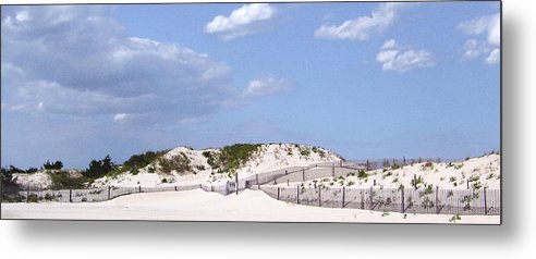 Metal Print featuring the photograph Dunes by Iris Posner