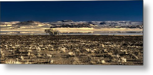 Alvord Desert Metal Print featuring the photograph Alvord Desert by Adele Buttolph