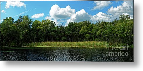 Alexander Springs Metal Print featuring the photograph Alexander Creek by Paul Mashburn