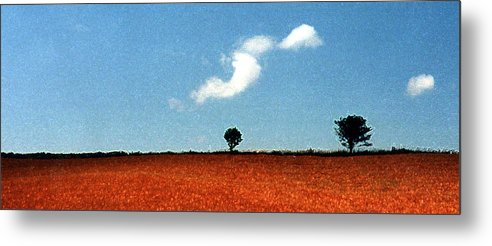 Summer Metal Print featuring the photograph Summer Field With Two Trees 2 Ae2 by Lyle Crump