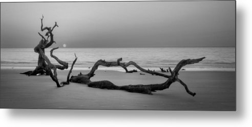 Driftwood Metal Print featuring the photograph Beach Art Cropped In Black An White by Greg Mimbs