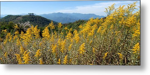 Mountain View Metal Print featuring the photograph Goldenrod Mountain View by Alan Lenk