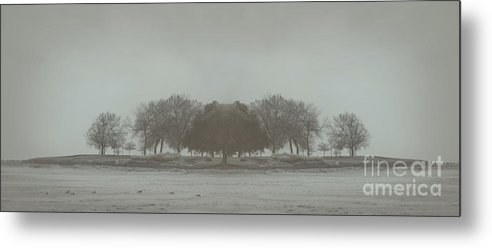 Landscape Metal Print featuring the photograph I Will Walk You Home by Dana DiPasquale