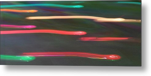 Snakes Metal Print featuring the photograph Snakes by Magda Levin-Gutierrez