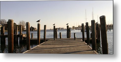 Peer Metal Print featuring the photograph Three Birds by Keith Gray