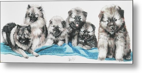 Non-sporting Metal Print featuring the mixed media Keeshond Puppies by Barbara Keith