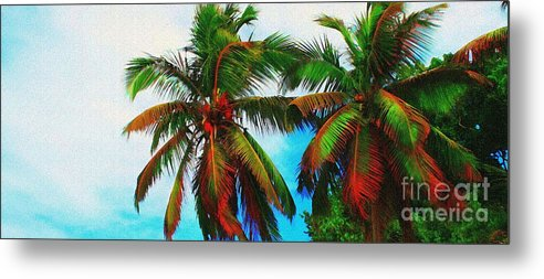 Palm Metal Print featuring the photograph Sunny Palms by Perry Webster