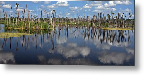 Orlando Metal Print featuring the photograph Orlando Wetlands Cloudscape 5 by Mike Reid