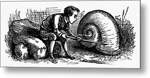 19th Century Metal Print featuring the photograph Mother Goose: Snail by Granger