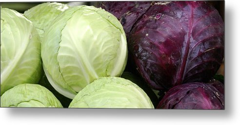 Vegetable Metal Print featuring the photograph Cabbage Heads by Sonja Anderson