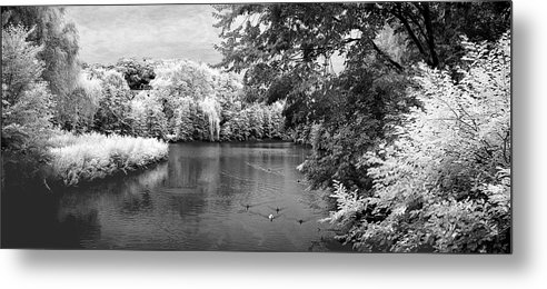 Infrared Metal Print featuring the photograph Tuckahoe Lake Infrared by Turhan Von Brandon