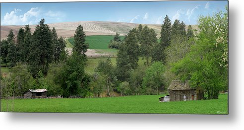 Farm Metal Print featuring the photograph Fields Of Dixie by Melisa Meyers