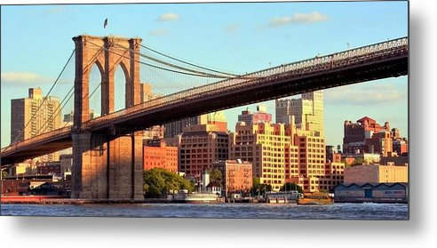 Brooklyn Metal Print featuring the photograph Brooklyn by Mitch Cat