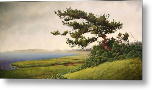 Cape Cod Metal Print featuring the painting Wellfleet Saltmarsh by Stephen Bluto