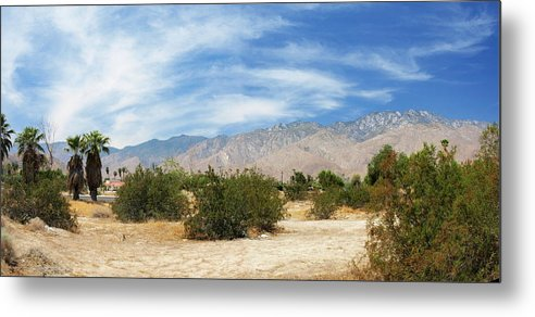 Desert Metal Print featuring the photograph Mojave Pan 2 by Chuck Shafer