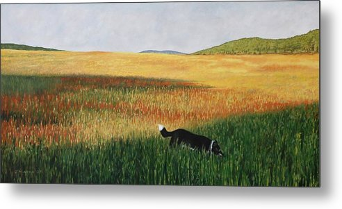 Dog Metal Print featuring the painting Missy In The Field by Allan OMarra