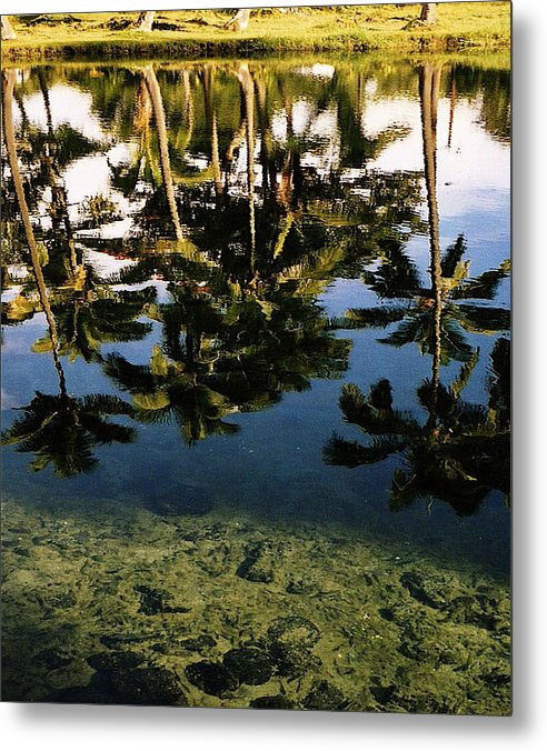 Palms Metal Print featuring the photograph Reflected Palms by Michael Lewis