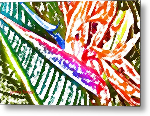 Bird Of Paradise Metal Print featuring the digital art Bird of Paradise Painted by James Temple