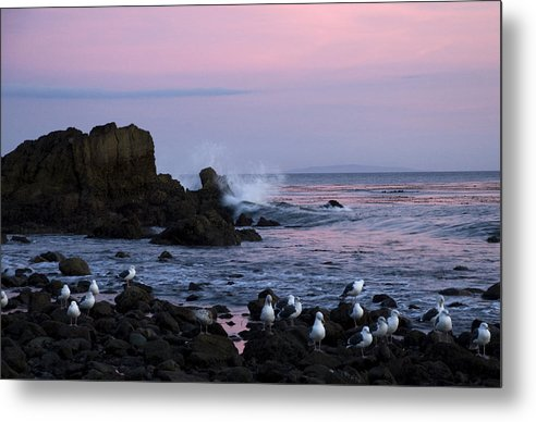 Beach Metal Print featuring the photograph Crashing Wave by Jessica Wakefield