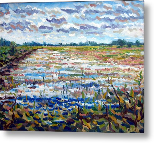Loxahatchee Metal Print featuring the painting Loxahatchee Wetlands by Ralph Papa