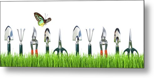 Grass Metal Print featuring the photograph Garden Tools by Liliboas