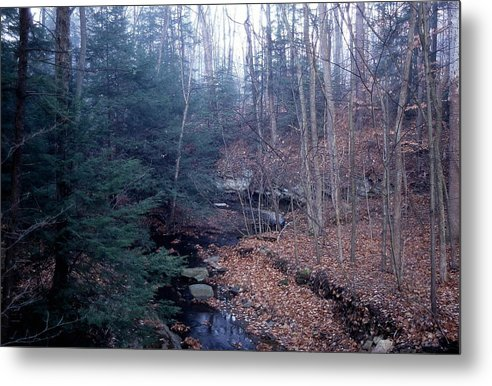 Scenic Metal Print featuring the photograph 042707-2 by Mike Davis