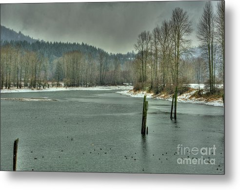 Nicomen Slough Metal Print featuring the photograph Winter by Rod Wiens