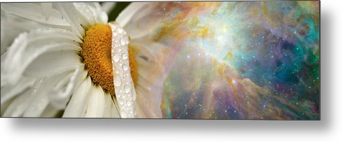 Photography Metal Print featuring the photograph Daisy With Hubble Cosmos by Panoramic Images