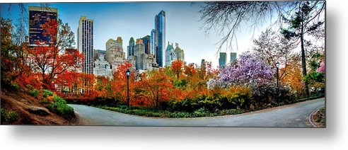 Central Park Metal Print featuring the photograph Changing Of The Seasons by Az Jackson