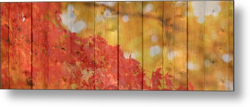 Autumn Metal Print featuring the photograph Autumn Outdoors 1 Of 2 by Beverly Claire Kaiya