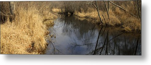 Reflection Metal Print featuring the photograph Black River by Steve Gravano