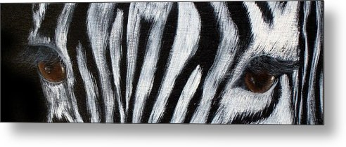Zebra Eyes Metal Print featuring the painting Whos Watching Who  Zebra by Darlene Green