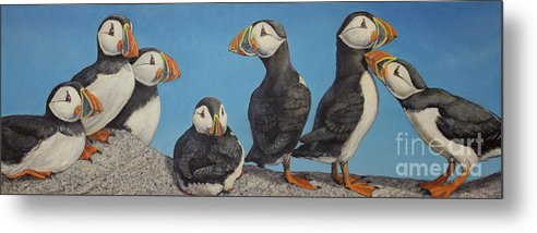 Auks Metal Print featuring the painting Puffin Palooza 1 by Joseph Rizzo