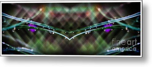 Raindrops Metal Print featuring the photograph Droplets Abstract by Yumi Johnson