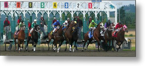 Amimal Metal Print featuring the photograph Starting Gate by Lori Seaman