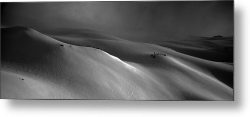 Snow Metal Print featuring the photograph Snowscape by Alasdair Turner