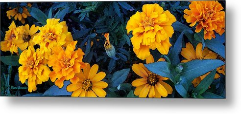 Flowers Metal Print featuring the painting Goldies by Diana Gonzalez